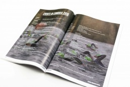 Lake District, Cumbria Holiday Guide, Bucket and Spade Marketing