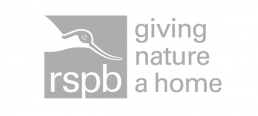 RSPB logo, Bucket and Spade Marketing